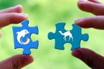 携程去哪儿联姻后:联手进军互联网保险市场