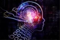 安联贝蒂娜:人工智能将大量改变保险岗位