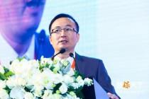 许闲:中国保险中介的发展和思考