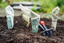 保险赛道这些项目屡获融资,投资人揭秘成功要素
